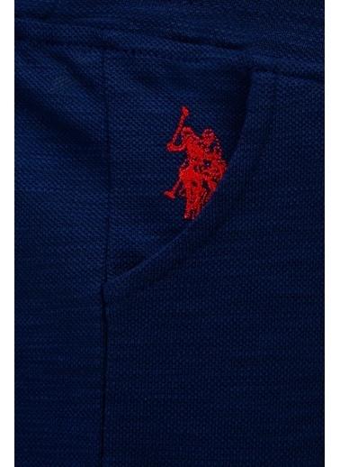 U.S. Polo Assn. Şort Lacivert